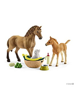 Schleich Horse Club Sarahs Animal Care