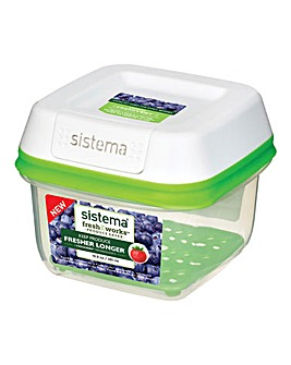 Sistema Freshworks Container 590ml