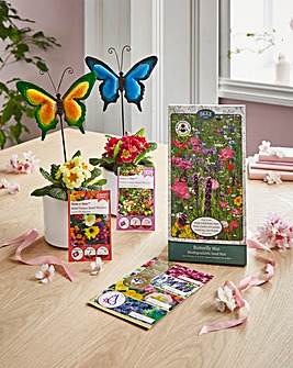 Create a Butterfly Garden Gift Set