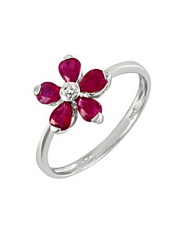 9ct W/G Ruby & Dia Ring