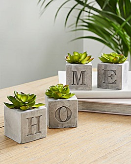 HOME Cement Artificial Plant Set