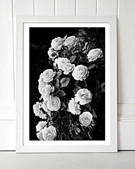 Rose Bush Framed Wall Art