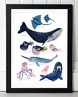 Sea Creatures Wall Art