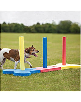Small Dog Agility Slalom