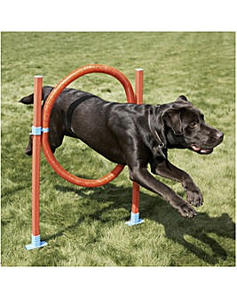 Agility Hoop Jump With Bag