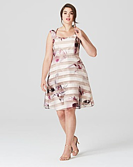 Studio 8 by Phase Eight Megan Dress