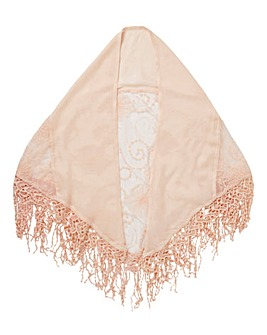 Blush Pink Embroidered Mesh Scarf
