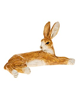 Country Hare Lying Small