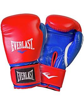 Everlast 14oz Boxing Gloves
