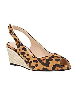 Lotus Tiffany Shoes Standard D Fit