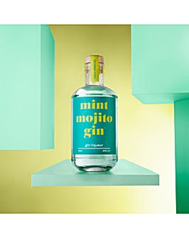Firebox Mint Mojito Gin Liqueur 50cl