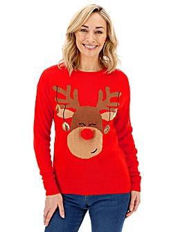Christmas Reindeer Matching Jumper