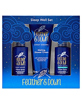 Feather & Down Sleep Well Set