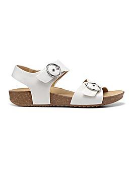 Hotter Tourist Standard Fit Sandal