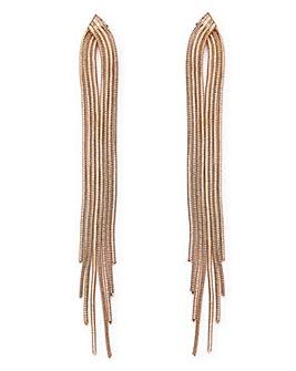 Snake Chain Long Drop Earrings