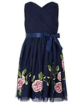 Monsoon Trellis Rose Dress