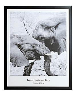 Elephant National Park Framed Print