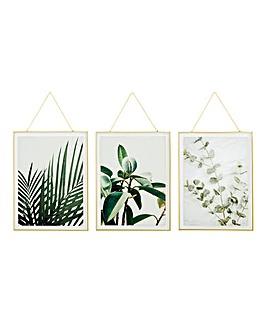 Set of 3 Hanging Glass Natural Prints