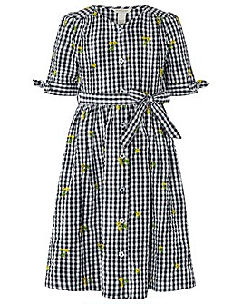 Monsoon Charlie Check Dress