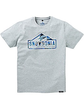 Snowdonia Grey Marl Tee Regular