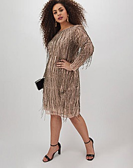 Joanna Hope Embellished Fringe Dress