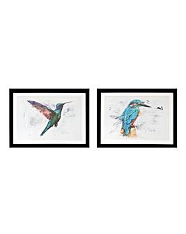Set of 2 Kingfisher Framed Print