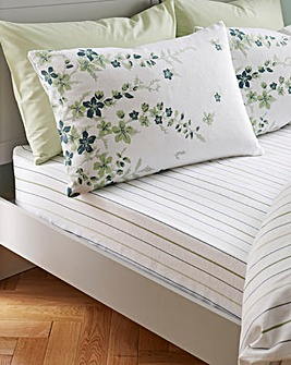Lucy Brushed Cotton Fitted Sheet