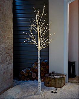 Birch Tree Warm White Lights