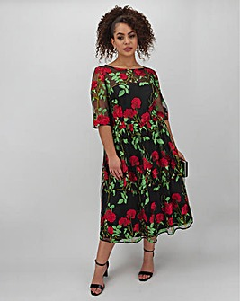 Joanna Hope Embroidered Mesh Midi Dress