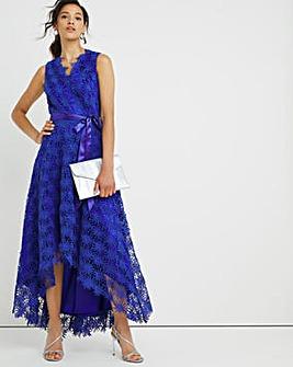 Joanna Hope Floral Lace Dress
