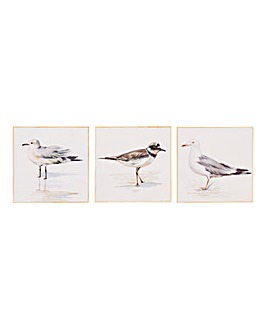 Set of 3 Nautical Bird Canvases