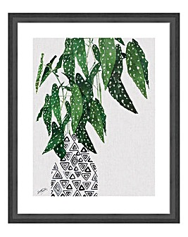 Polka Dot Begonia Plant Wall Art