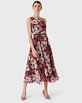 Hobbs Peony Carly Fit & Flare Dress