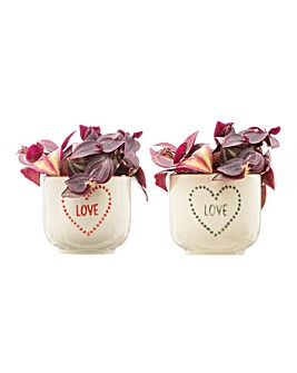 Sass & Belle Set of two love planters