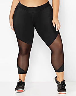 cd47abe62e8df Plus Size Tights | Black, Patterned & Fashion Tights | Fashion World