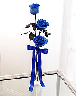 Personalised Memento Blue Roses
