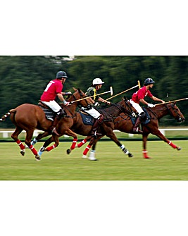 Discover Polo at Westcroft Park
