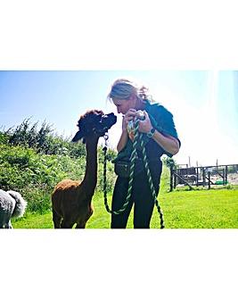Alpaca Trekking & Eagle Heights for 2