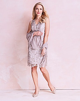 Gina Bacconi Lace Dress with Scarf