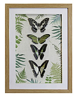 Botanical Butterfly Framed Print
