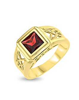 9 Carat Gold and Garnet Gents Signet Ring