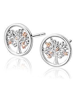 Clogau Tree of Life Stud Earrings