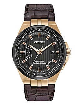 Citizen Gents Eco-Drive World Perpetual A.T Watch