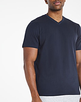 Navy V-Neck T-shirt Regular