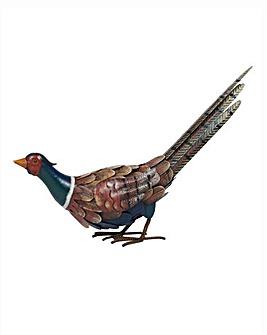 Feeding Pheasant