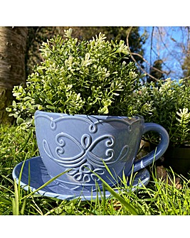 Ceramic Teacup Planter