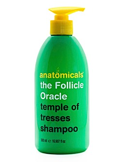 Anatomicals The Follicle Oracle Daily Shampoo
