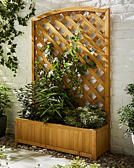 Wide Wood Trellis Planter