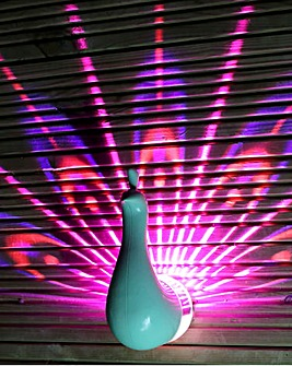 Percy Peacock Wall Light