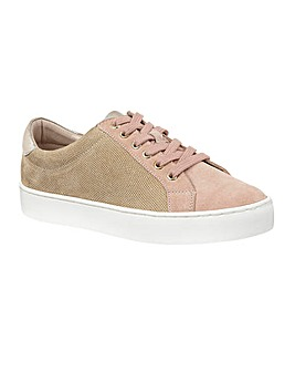 Lotus Amsterdam Shoes Standard D Fit